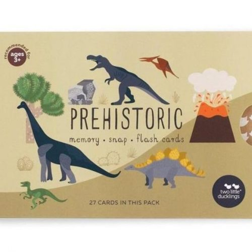 TLD Prehistoric Snap and Memory Cards